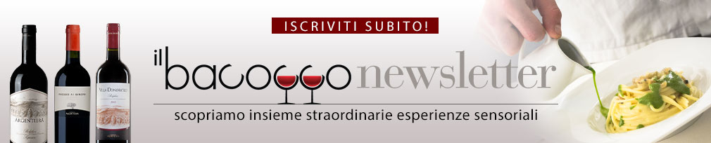 il-bacocco-02-testata-newsletter